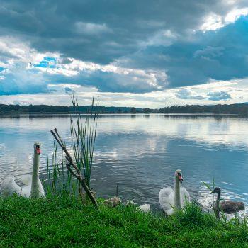 Trojisko jezero
